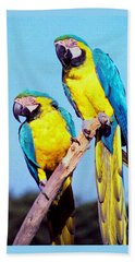 Tropical Parrots In San Francisco Beach Towel