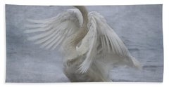 Trumpeter Swan - Misty Display Beach Towel