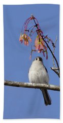 Beach Towel featuring the photograph Tufted Titmouse And Maple Keys by Daniel Reed