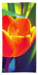 Beach Towel featuring the photograph Tulip 2 by Pamela Cooper