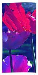Tulip 3 Beach Sheet by Pamela Cooper