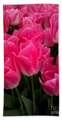 Beach Sheet featuring the photograph Tulip Festival - 19 by Hanza Turgul