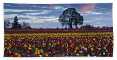 Tulip Field's Last Colors Beach Towel