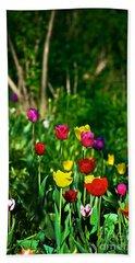 Tulip Rainbow Beach Towel