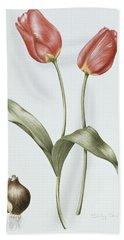 Tulip Red Darwin Beach Towel