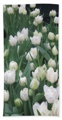 Beach Towel featuring the photograph Tulip White Show Flower Butterfly Garden by Navin Joshi