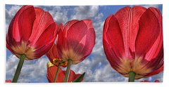 Beach Towel featuring the photograph Tulips Are Better Than One by Paul Wear