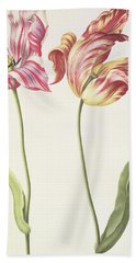 Tulips Beach Towel by Nicolas Robert