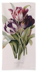 Tulips Beach Towel by Pierre Joseph Redoute
