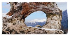 Beach Towel featuring the photograph Tunnel Root by Stanza Widen