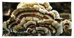 Turkey Tail Fungi Beach Sheet