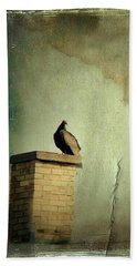 Turkey Vulture Beach Towel by Gothicrow Images