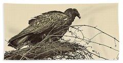 Turkey Vulture V2 Beach Towel by Douglas Barnard
