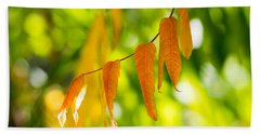 Beach Towel featuring the photograph Turning Autumn by Aaron Aldrich