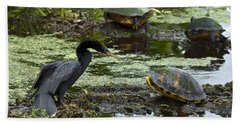 Turtles And Anhinga Beach Towel by Mark Newman