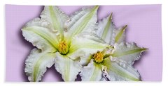 Two Clematis Flowers On Pale Purple Beach Sheet by Jane McIlroy
