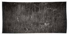 Beach Sheet featuring the photograph Two Deer Hiding by Bradley R Youngberg