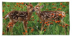 Beach Towel featuring the photograph Two Fawns Talking by Chris Scroggins