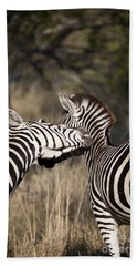 Beach Towel featuring the photograph Two Plains Zebra Botswana by Liz Leyden