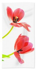Two Red Transparent Flowers Beach Sheet