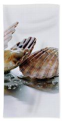 Two Scallops Beach Towel