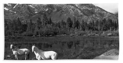 Two White Horses By A Pond Beach Towel