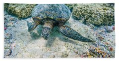 Swimming Turtle Beach Towel by Denise Bird