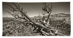 Uprooted - Bryce Canyon Sepia Beach Towel by Tammy Wetzel