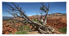 Uprooted - Bryce Canyon Beach Towel by Tammy Wetzel