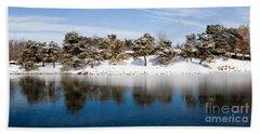 Urban Pond In Snow Beach Sheet
