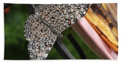 Beach Towel featuring the photograph Variable Craker Butterfly #2 by Judy Whitton