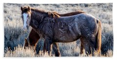 Velvet - Young Colt In Sand Wash Basin Beach Towel by Nadja Rider