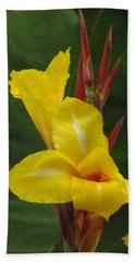 Velvety Yellow Iris  Beach Towel