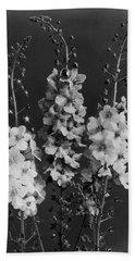 Verbascum Phoeniceum Flowers Beach Towel