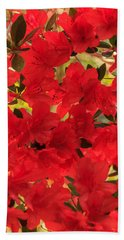 Vibrant Azalea Beach Sheet