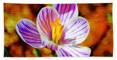 Beach Towel featuring the photograph Vibrant Spring Crocus by Judy Palkimas