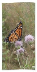Beach Towel featuring the photograph Viceroy On Thistle by Robert Nickologianis