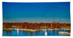 View From Art Hill Forest Park Missouri Beach Towel by Peggy Franz