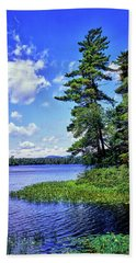 View Of The Follensby Clear Pond Beach Towel