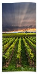 Vineyard At Sunset Beach Towel by Elena Elisseeva