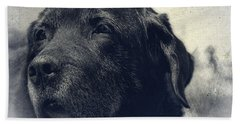 Vintage Black Lab Beach Sheet by Eleanor Abramson