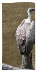 Vulture On Guard Beach Towel
