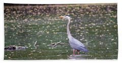 Beach Towel featuring the photograph Wading Crane by Susan  McMenamin