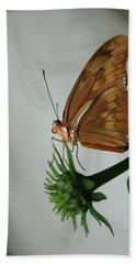 Butterfly Waiting On The Wind  Beach Towel