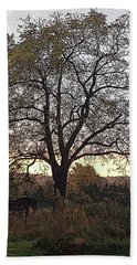 Walnut Tree Series Poster Edges Beach Sheet