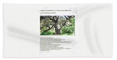 Walt Whitman - I Saw In Louisiana A Live-oak Growing Beach Towel