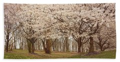Washington Dc Cherry Blossoms Beach Towel