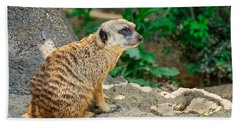Watchful Meerkat Beach Towel