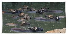 Water Buffalo Beach Towel by Chris Flees
