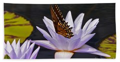 Water Lily And Swallowtail Butterfly Beach Towel